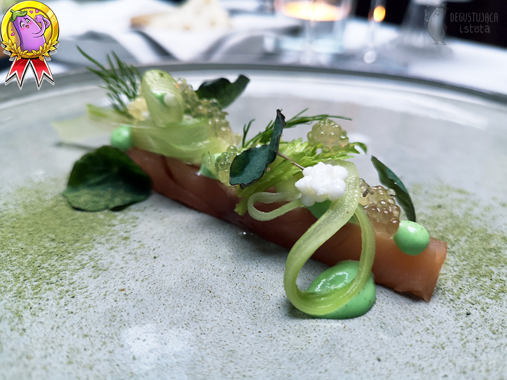 A rectangular piece of salmon is placed on a gray plate. Green leaves and thin strips of celery and white and transparent balls are placed on the salmon. Next to the salmon are portions of green wasabi cream.