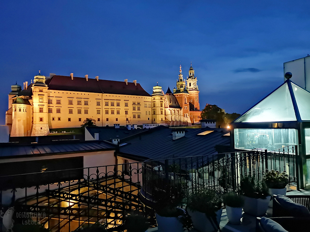 It is already dark and you can see the beautifully illuminated Wawel Castle.