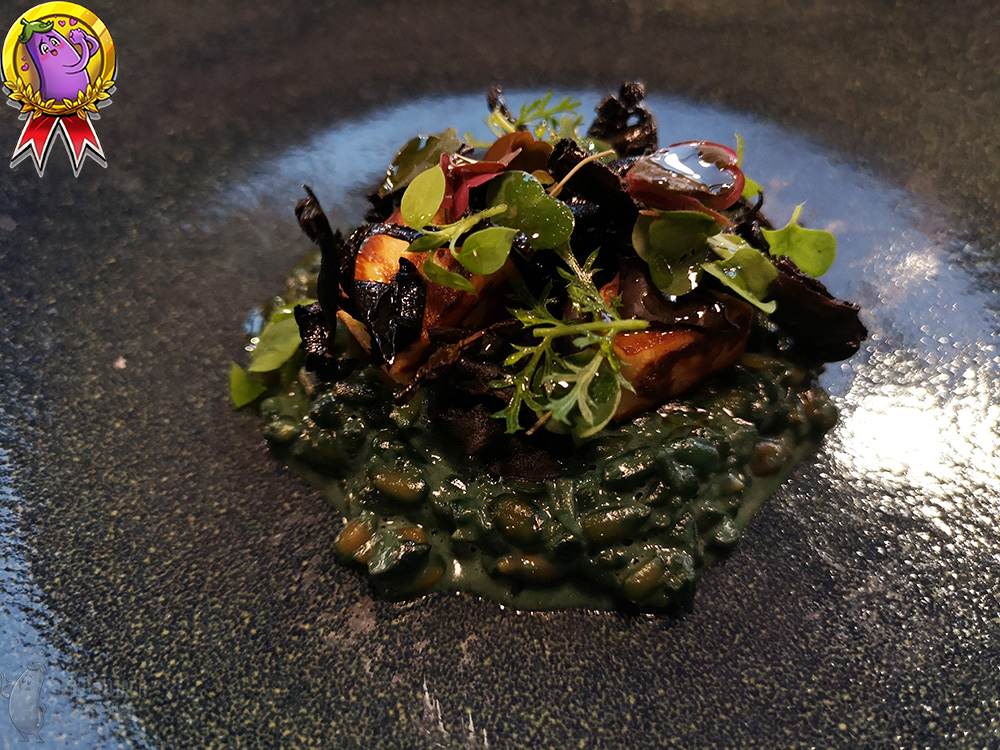 On a dark green plate lies a portion of dark green risotto with black chanterelle.